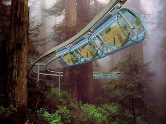 shweeb monorail for human powered vehicles 6