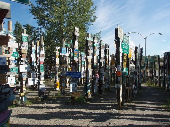sign post forest 7