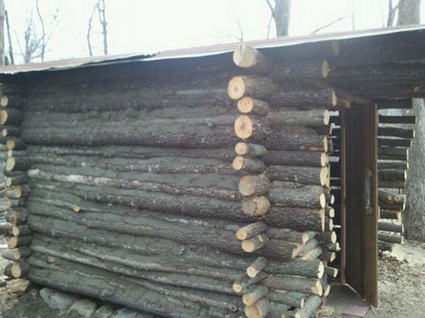 timber made cabin 4