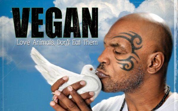 tyson vegan small