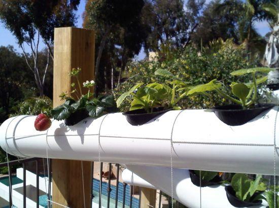 vertical earth gardens 4