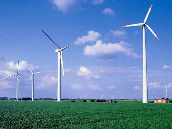 Wind Farm Wind forecasting