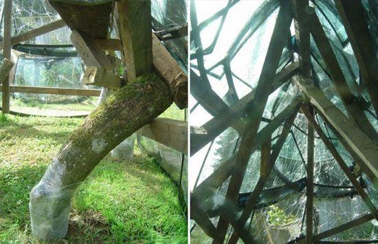 winshield greenhouse 3