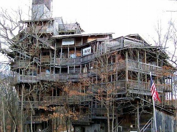 World's tallest Treehouse
