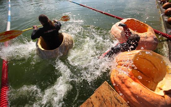 worlds largest pumpkin boat race begins in germany