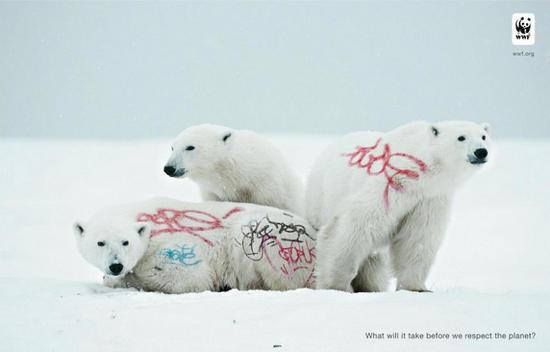wwf graffiti polar bear