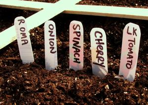 homemade-vegetable-plant-labels1