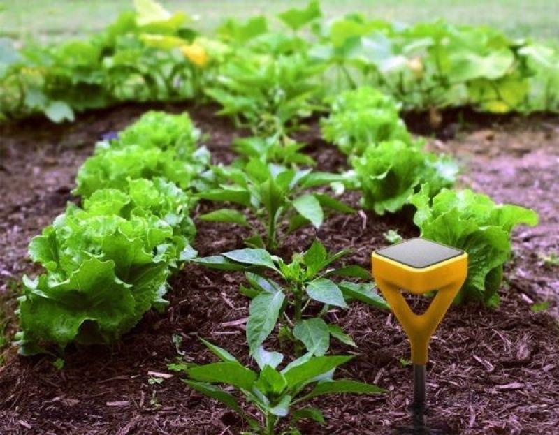 Edyn smart garden system