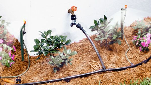 Installing drip irrigation systems