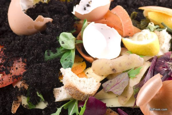 composting like a boss (2)