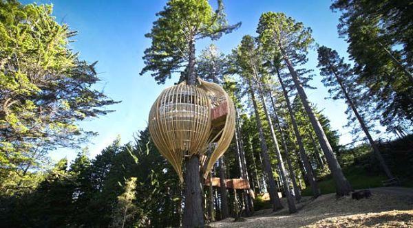 Treehouse Restaurant, New Zealand