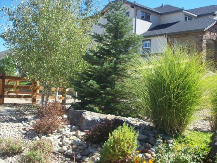 Xeriscaping, Denver