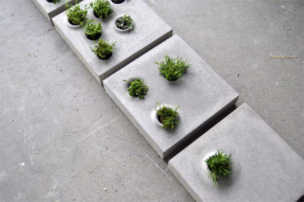 Vegetation stones  2