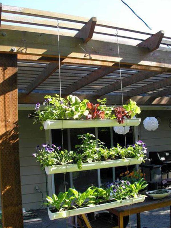 Hanging rack garden