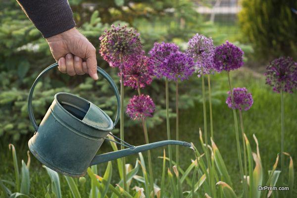 hand watering your garden (3)