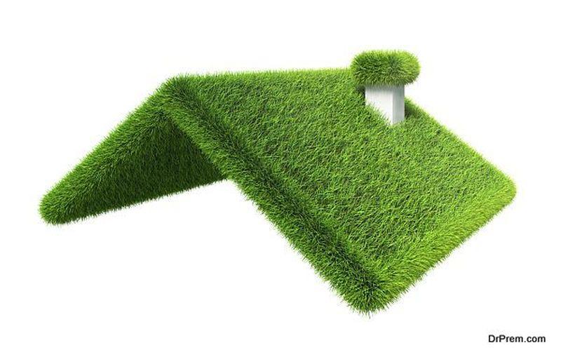 green grass house roof