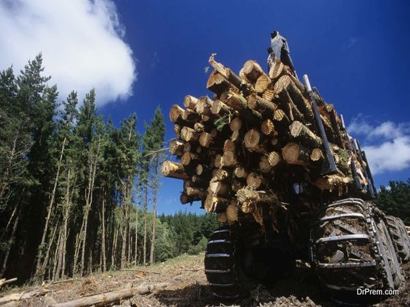 Prevent Deforestation