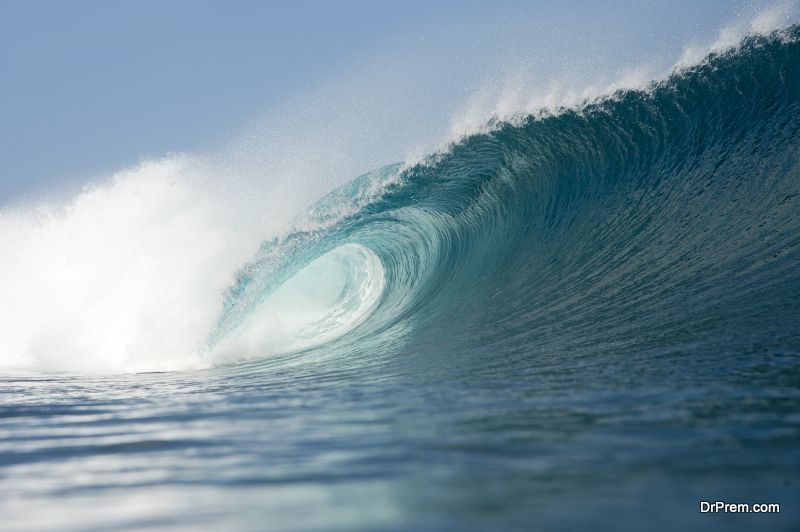 know about wave energy