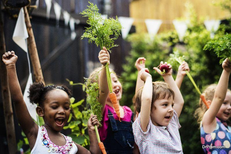 Setting-up-a-School-Garden