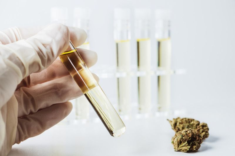 CBD Vape Oil Quality Test