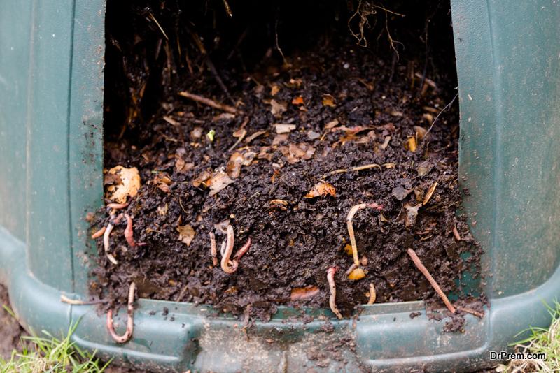Improve Soil in Your Garden