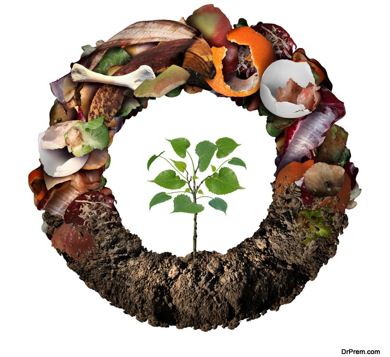 Recycling food waste as fertilizer