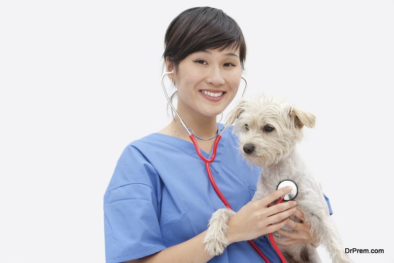 Call your veterinarian