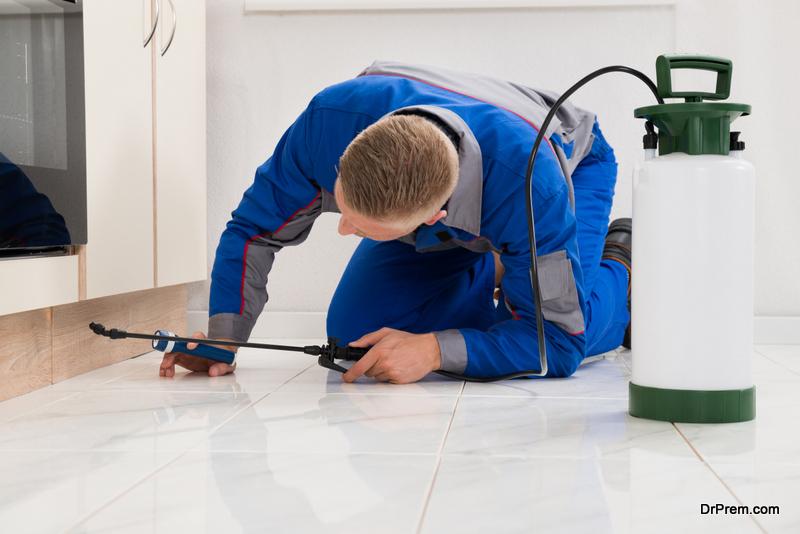 Safeguard-Pets-during-Pest-Control-Treatment.