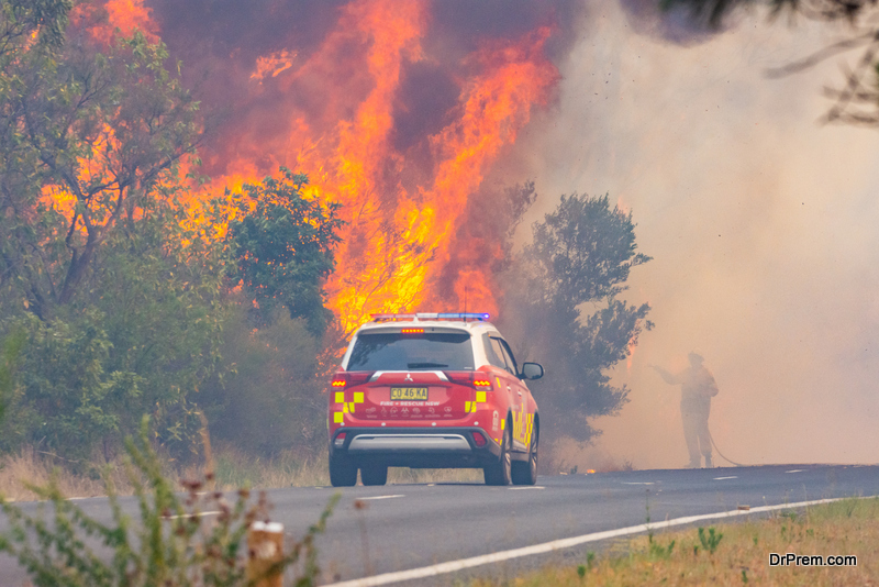 The Unprecedented Environmental Impact of Australian Bushfires