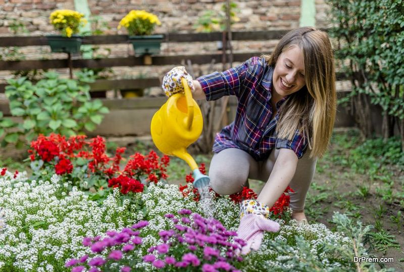 adding-plants-to-bring-the-exterior-of-your-home-to-life