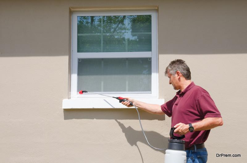 DIY Pest Control Method