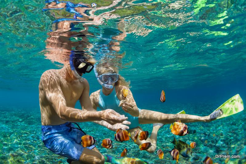 Eco-Friendly Activities