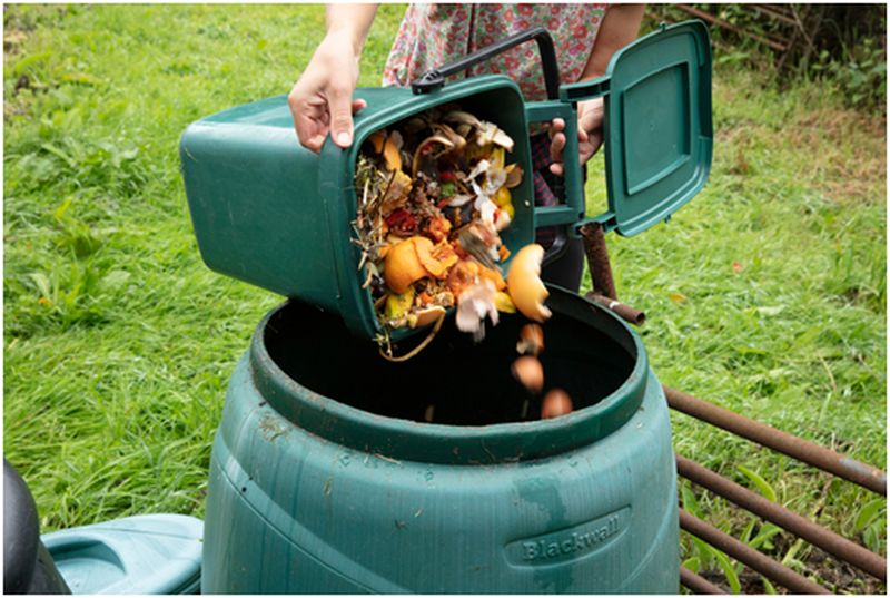 Store Food Scraps for Home Composting