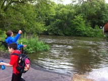 We enjoyed throwing rocks into the river