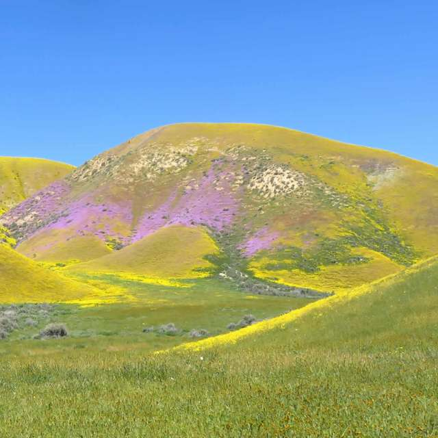 Parfait hillside, Highway 58