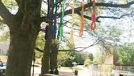 Nooses at college campus