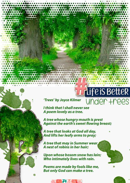greene cuts frames 01