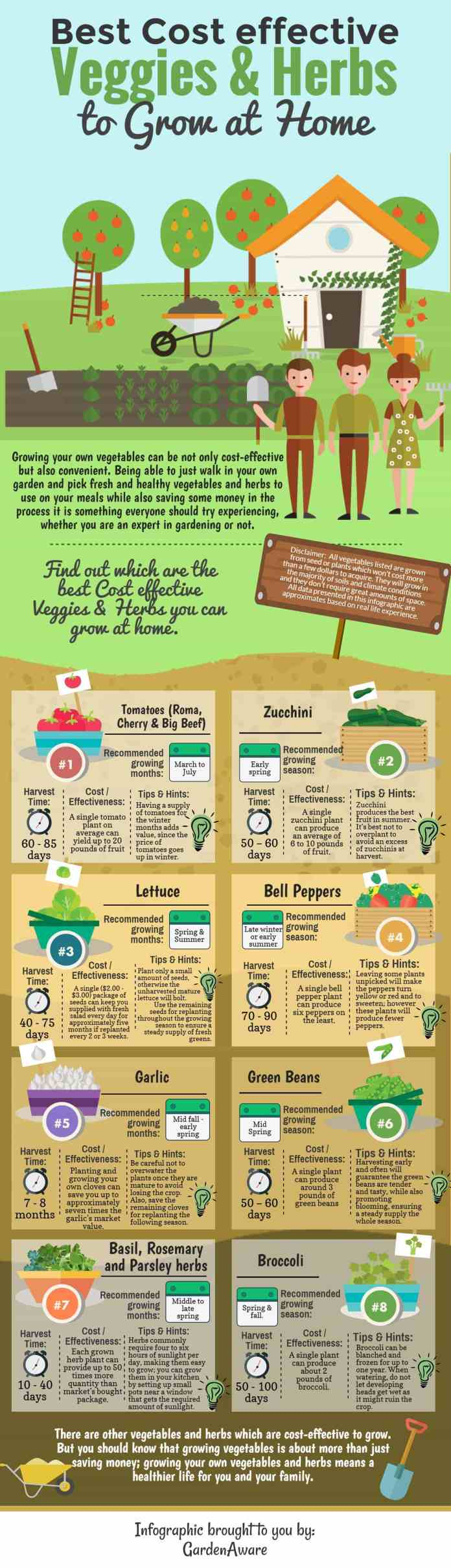 home gardening infographic