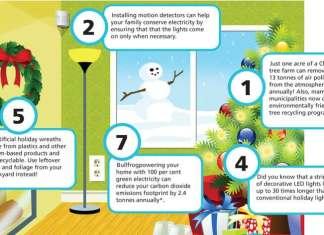 sustainable holiday decoration