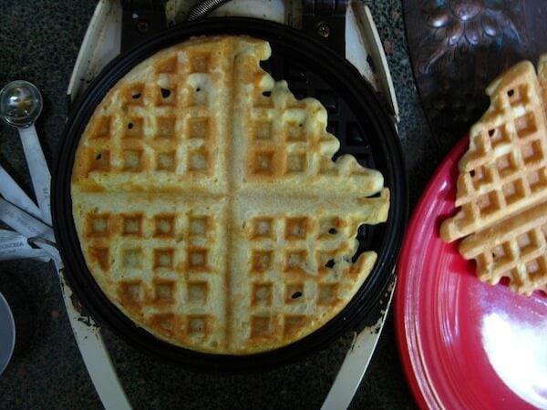 Savory Gluten Free Waffles