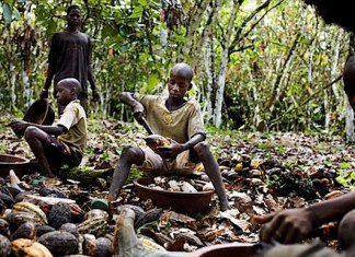 child labour for cocoa and chocolate