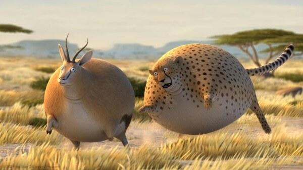 fat safari
