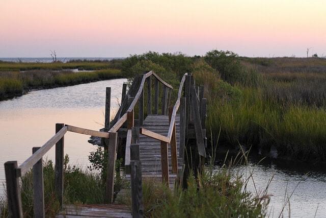 Chesapeake Bay Foundation