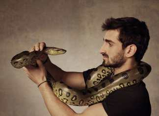 Paul Rosolie and snake