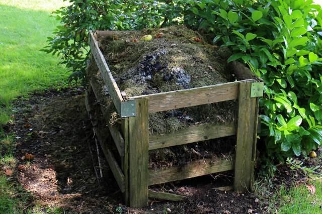 compost bin area