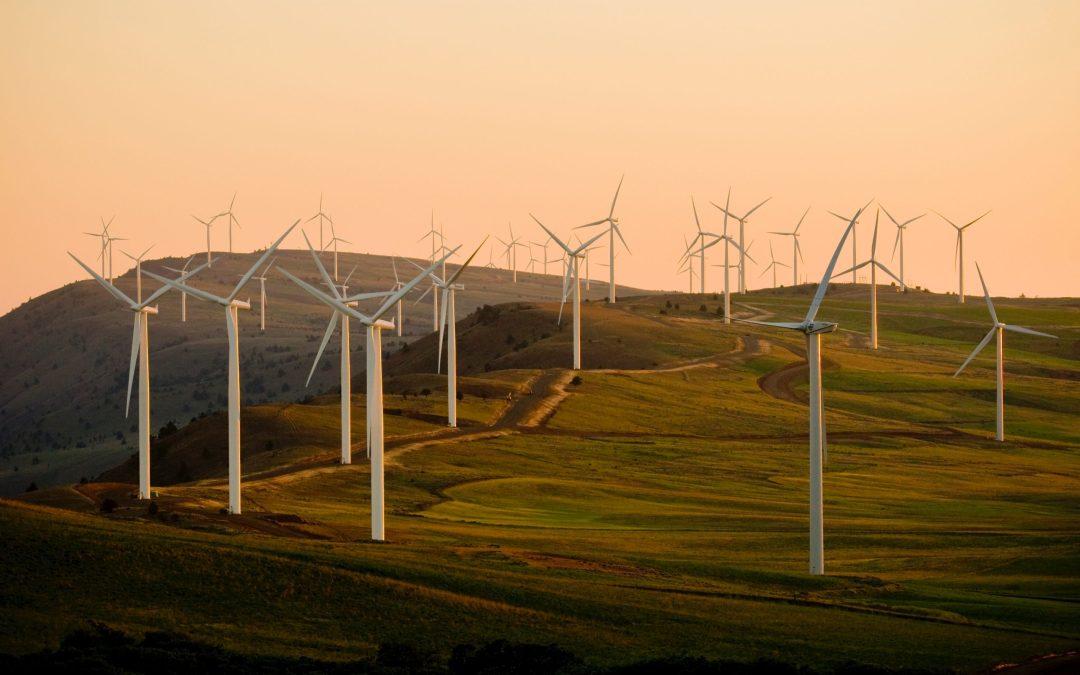 The UK's greenest 137 greenest days!