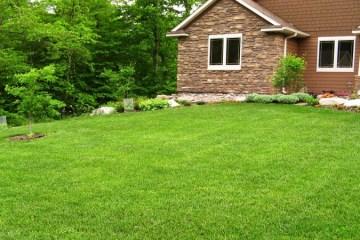 Full Lawn Treatment