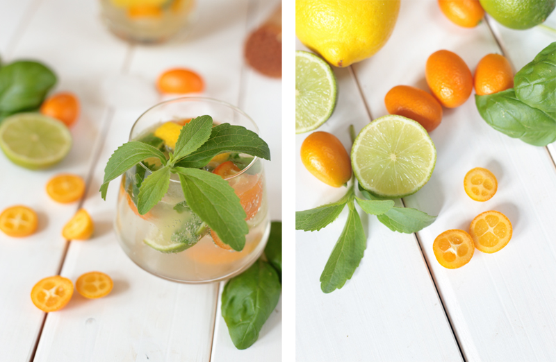 The Best Gin and Citrus Cocktail
