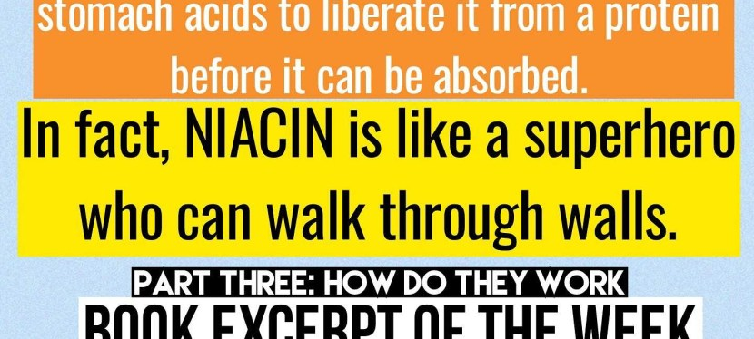 Niacin as Riboflavin's Cooler Older Brother – Book Excerpt of the Week