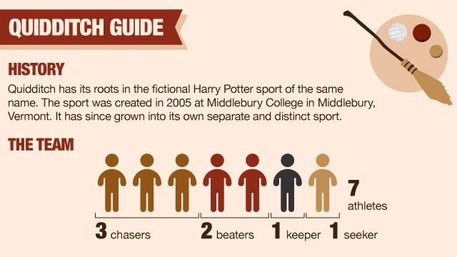 infographic explaining Quidditch
